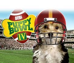 Puppy Bowl 2011